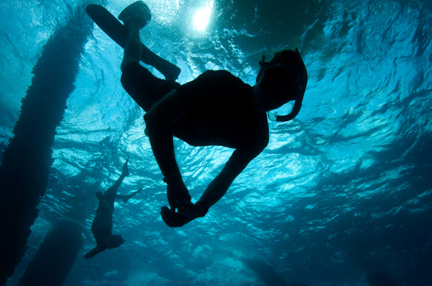 the underwater designer